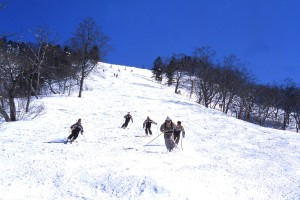 Ski programs & Racing camps